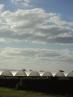 lockyer farms (7)