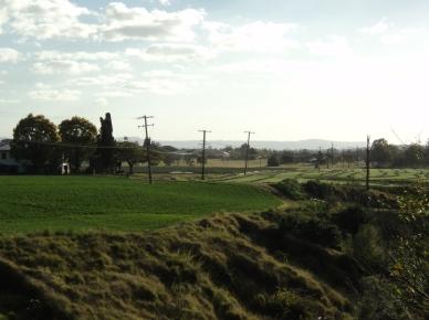 lockyer farms (9)
