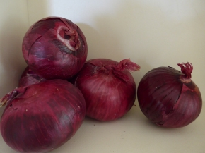 Some things I now know about Onions or teary onion tales